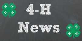 Cover photo for 4-H Age Competition Policy Changes