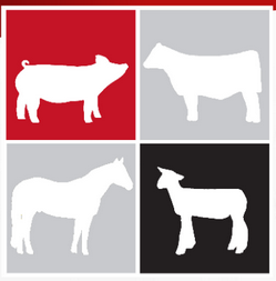 Livestock Species