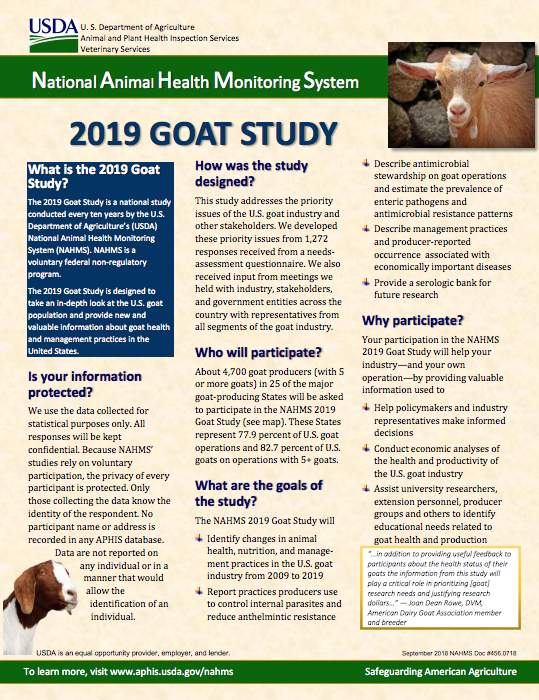 Goat Study page 1 image