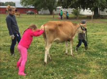 children leading a cow