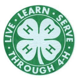 Cover photo for 4-H Project Palooza