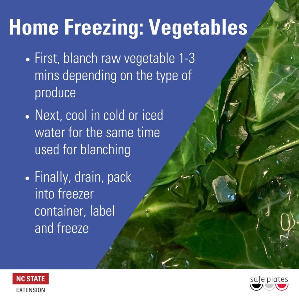 Home Freezing poster