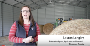 Cover photo for How to Sample Hay Bales for Nutritive Value Analysis