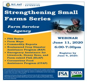 Cover photo for N.C. A&T Strengthening Small Farms Series