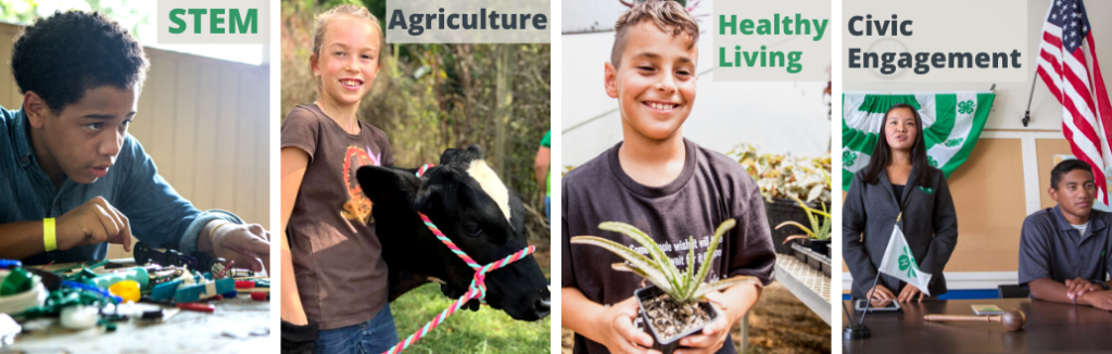 Youth programs: STEM, Agriculture, Healthy Living, Civic Engagement