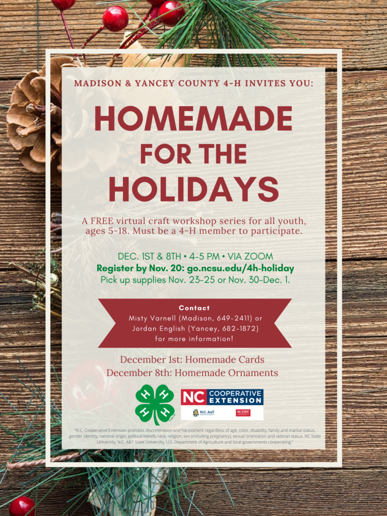 Homemade for the Holidays flyer