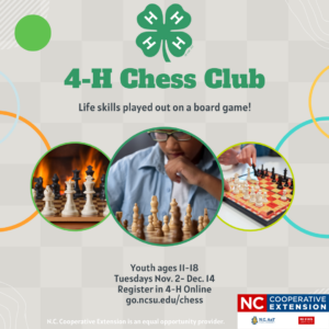 Cover photo for 4-H Chess Club