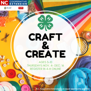 Craft & Create Flyer